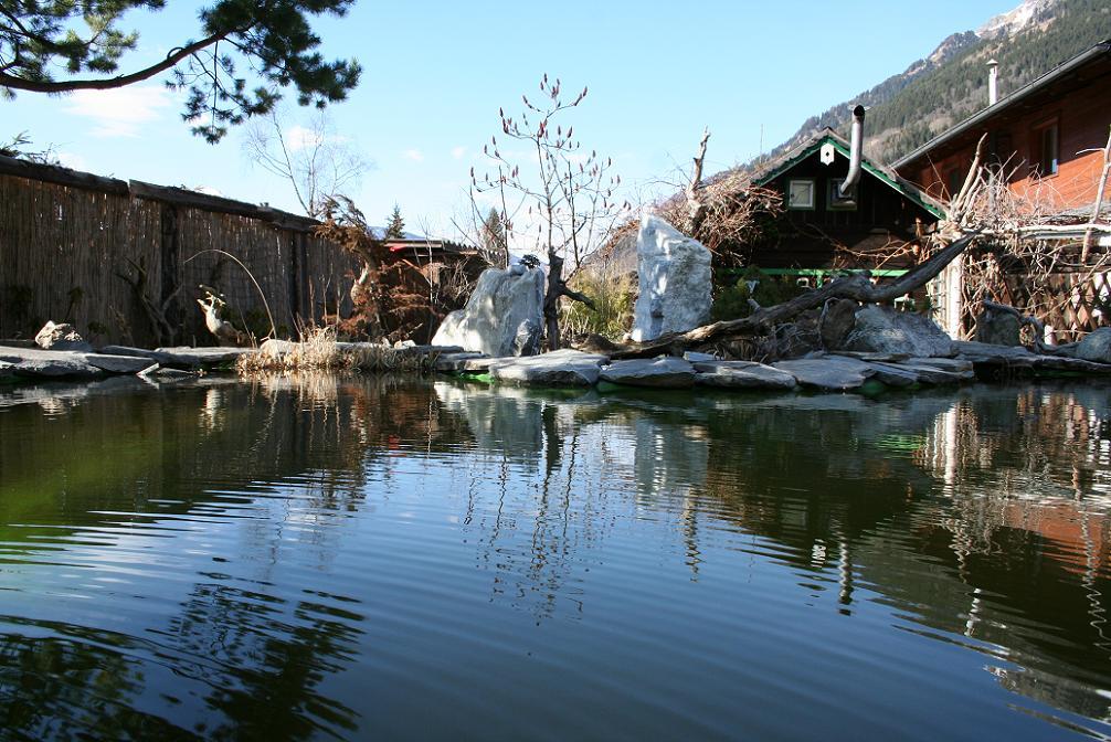Teich im winter for Teich im winter
